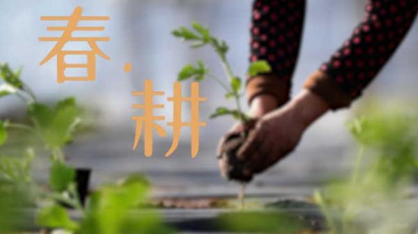 镜观中国特刊 春耕篇
